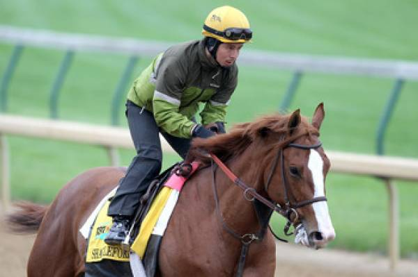 Shackleford Odds of Winning Belmont Stakes