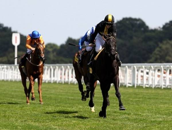 Salisbury Betting Odds –Totepool Sovereign Stakes
