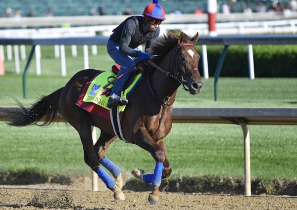 Best Payout Odds on Sonneteer 50-1 to win Kentucky Derby