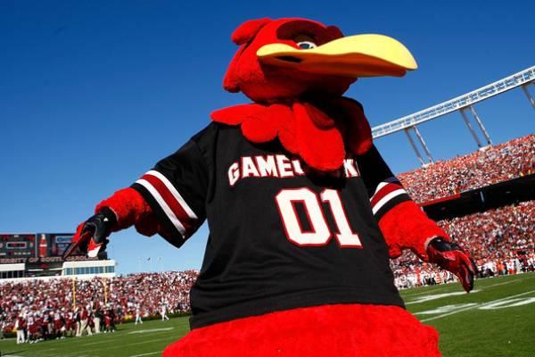South Carolina Gamecocks Odds to Win 2014 SEC Southeast, Prediction
