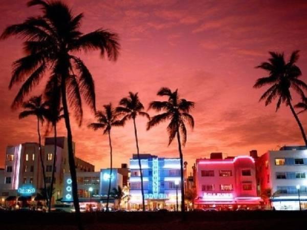 South Florida Bookies