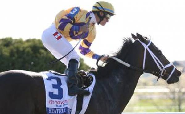 Stately Victor Belmont Stakes Odds