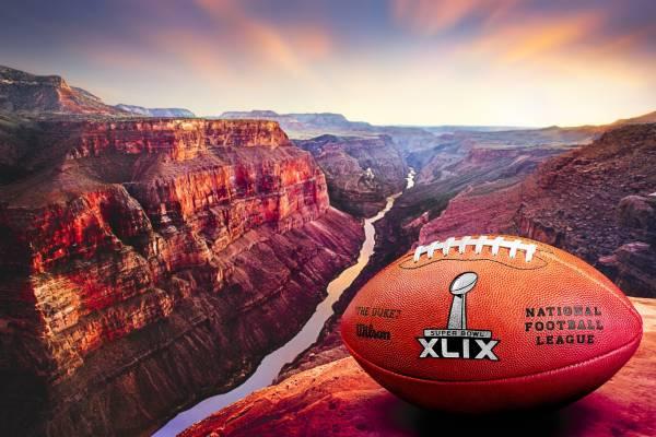Tỉ Lệ Cược cho Tỉ Số Chênh Lệch trận Super Bowl 2015 – Tiền Trả