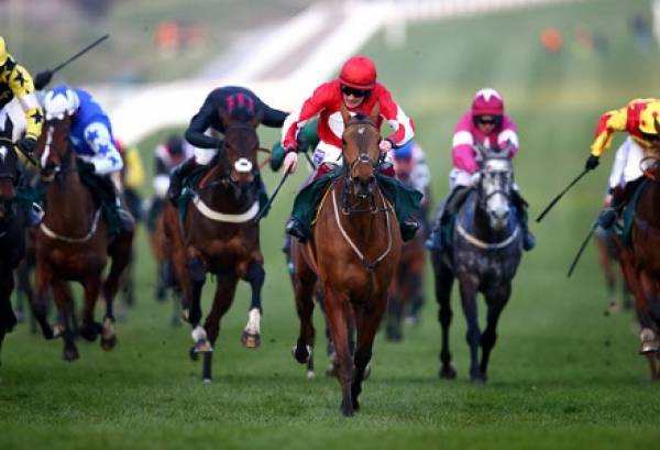 2017 Supreme Novices Hurdle Betting Odds - Cheltenham Festival