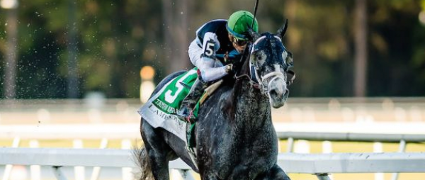 Tapwrit Early Odds to Win the 2017 Kentucky Derby