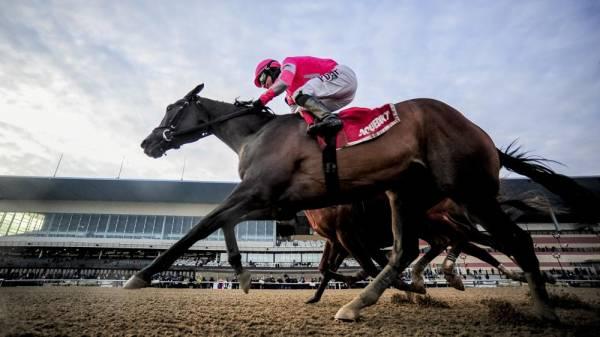 Tax Kentucky Derby Payout Odds