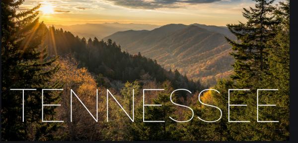 Tennessee Panel OKs 5th Online Sportsbook Operator