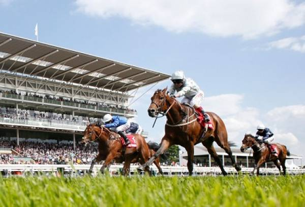The Derby 2017 Betting Odds has Cracksman New Favorite