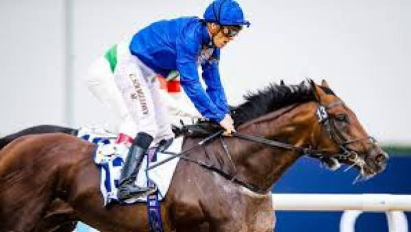 Thunder Snow Payout Odds 2018 Breeders Cup Classic