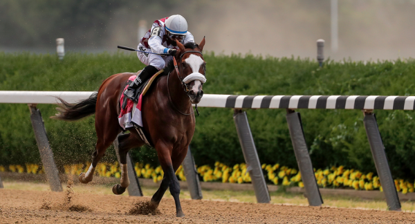 Tiz The Law Payout Odds to Win Breeders Cup Classic