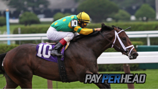 Get a Pay Per Head Software Free For 3 Weeks During Triple Crown