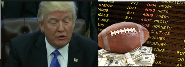 Gambling911 Urges President Trump to Legalize Sports Betting Nationally