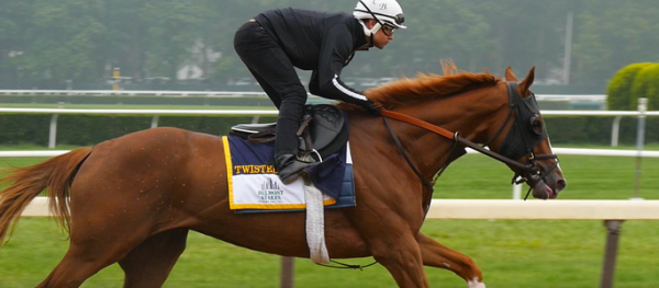 Why Twisted Tom Win the Belmont Stakes – Pros and Cons - Latest Odds