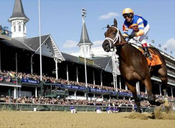 Uncle Mo Odds to Win 2011 Breeders Cup Classic