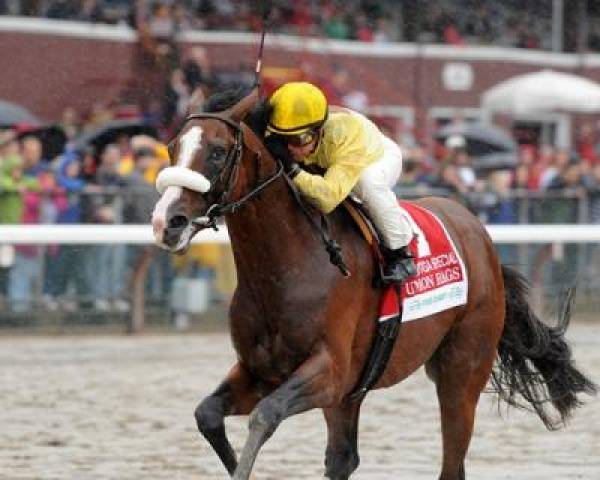 Belmont Stakes 2012 Contenders