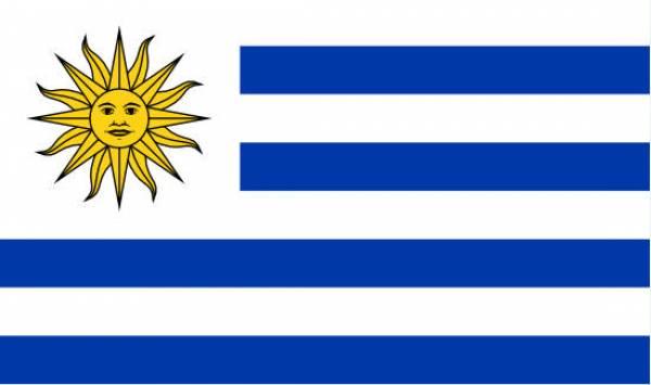 Apuestas en línea en Uruguay: Adonde Apostar