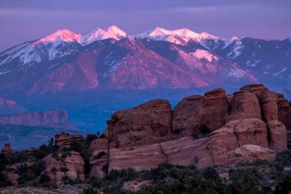 Utah Odds to Win Super Tuesday 2020