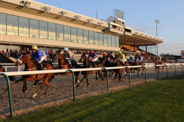 Today's Wolverhampton Betting Odds Online