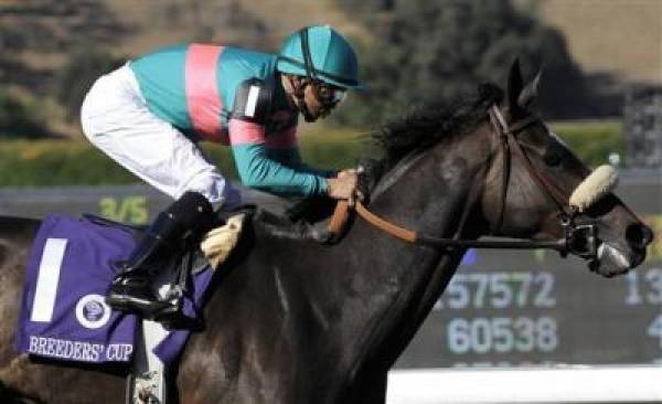 2009 Breeders Cup Classic Expert Picks and Predictions