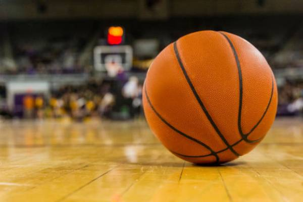 Live Betting for College Basketball the Premier Pay Per Head Way
