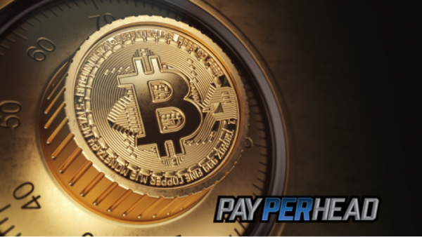 Online Bookie Tips: Learn How To Protect and Store Bitcoins