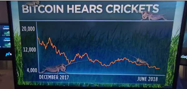 Bitcoin Hears Crickets: Drops Back Below $5000