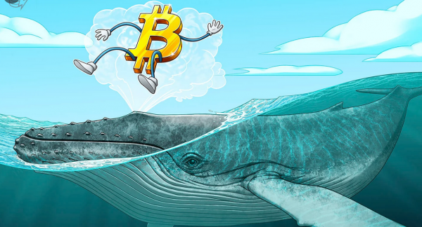 """Bitcoin """"Whales"""" Jump Back Into Market"""