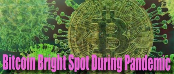 Bitcoin Bright Spot in Midst of Coronavirus Pandemic