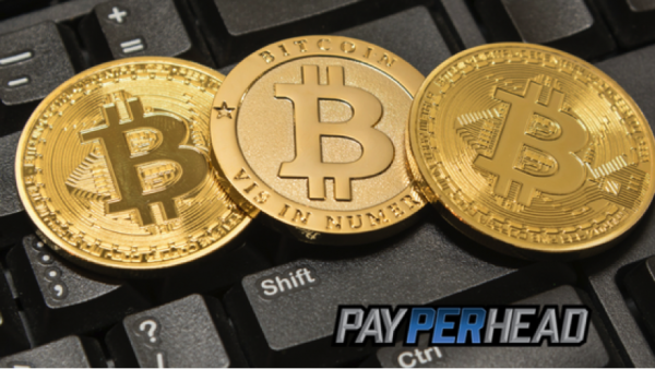 How Do Online Bookies Switch Their Bettors to Bitcoin?