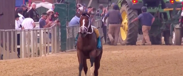 Bodexpress Runs Preakness Without a Jockey but Declared 'Did Not Finish' - No Refunds