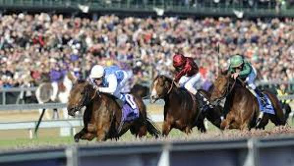 Betting on Favorites at the Breeders Cup