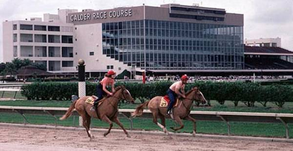 Calder Race Course Clashes Horse Industry Over Slot Machines