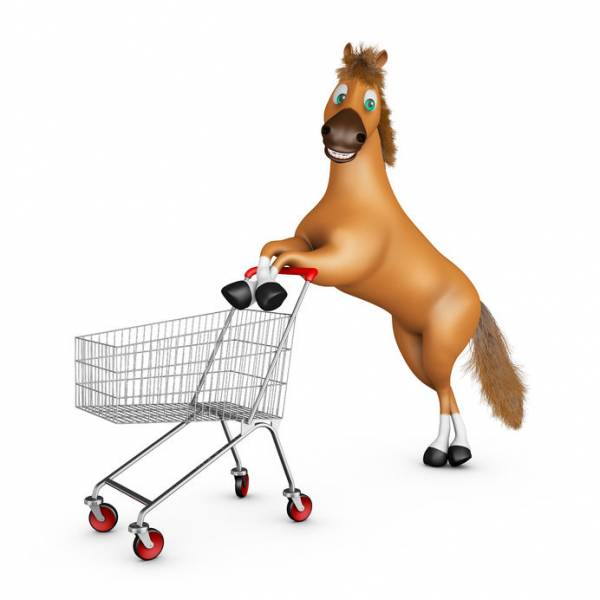 PayPal is the Cart Coming Before the Horse in the Bitcoin Space