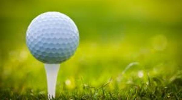 Daily Fantasy Golf Contests for John Deere Classic, Scottish Open: Latest Odds