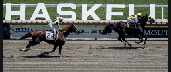 2021 Haskell Stakes Betting Odds