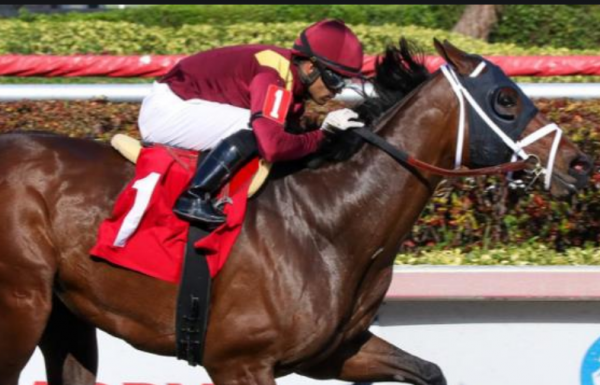 Where Can I Bet the Preakness Stakes Online From Illinois