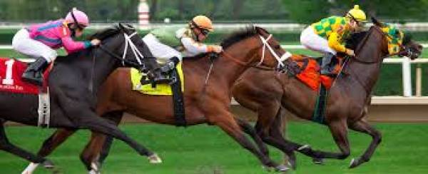 Customized Odds for the 2017 Kentucky Derby for Bookies
