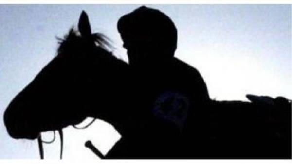 Belmont Stakes 2012 – Current Odds