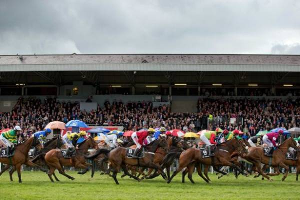 A Great View Odds to Win Punchestown 18:05 - Horse Racing
