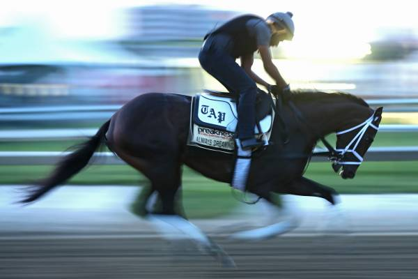 Pay Per Head for the Pegasus World Cup