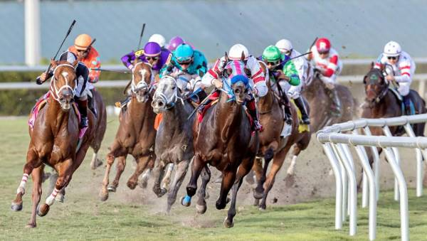 Horse Racing Group Closer to Payday in Sports Gambling Suit