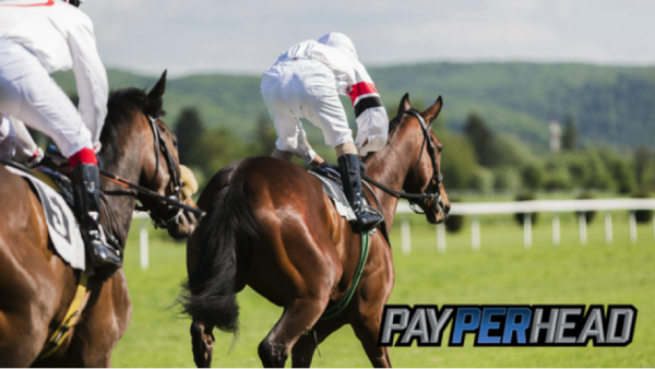 5 Reasons Online Bookies Shouldn't Forget About Horse Race Betting