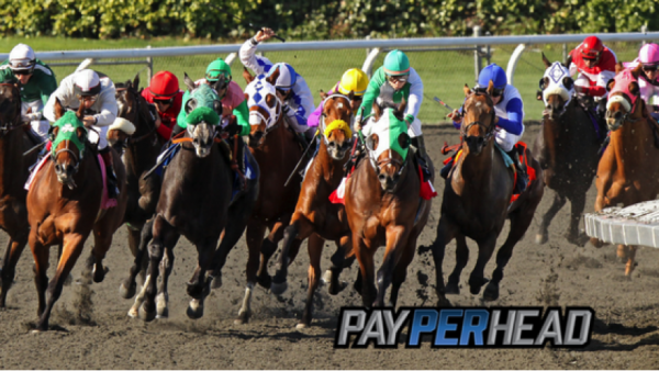 Racebook Tip: Use Santa Anita Derby Race To Increase Triple Crown Bettors