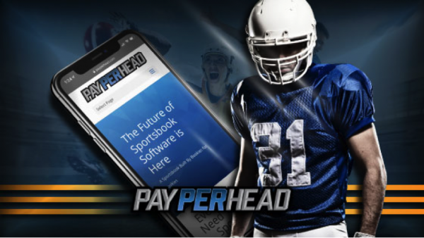 How Can Online Bookies Use PPH Tools To Their Advantage?
