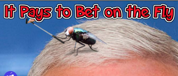 The Fly Returns and What Will Biden Say First Odds