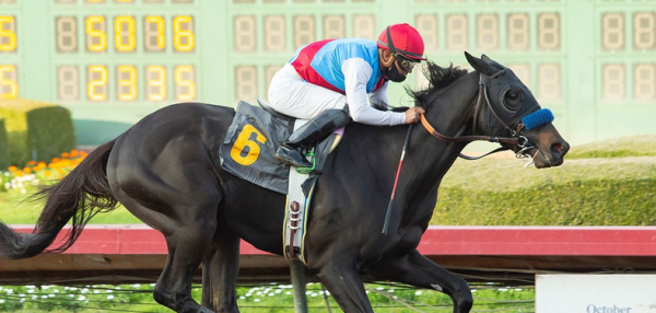 Medina Spirit Drug Test Confirmed; Derby Win in Jeopardy