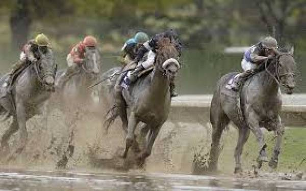 2018 Breeders Cup Classic Mudders