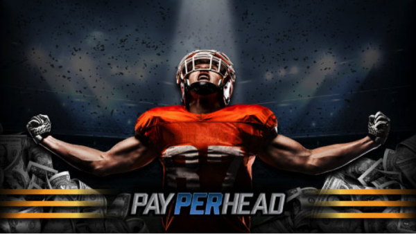 NCAA Week 14 Sportsbook Predictions & How To Increase Profits