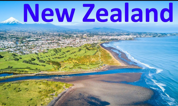 How Can I Gamble Online From New Zealand Using Bitcoin
