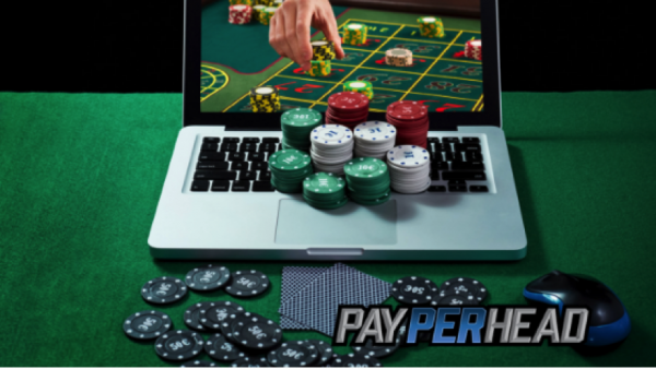 How To Adjust Your Online Casino To Different Betting Strategies